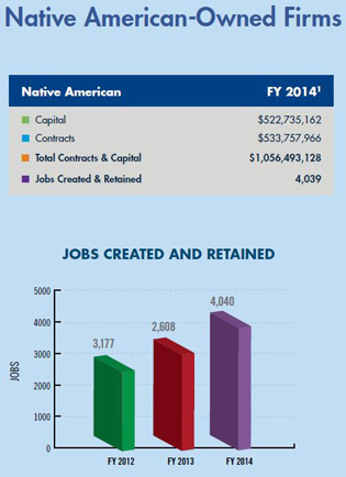 Native American-Owned Firms